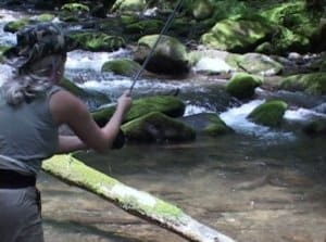 Hazel & Forney Creeks fishing
