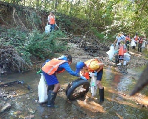stream clean-up