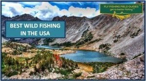 Best Wild and Backcountry Fly Fishing In USA
