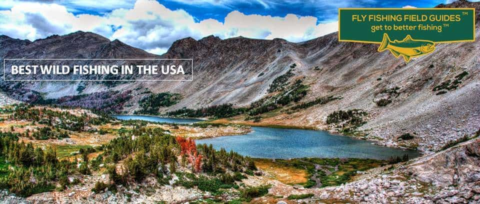 best wild fly fishing in usa