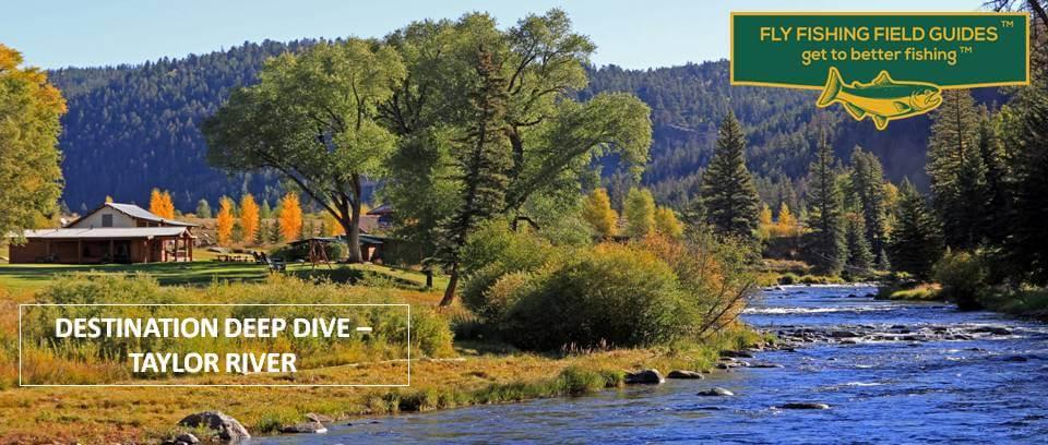 Taylor River Colorado