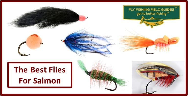 Best Flies For Salmon