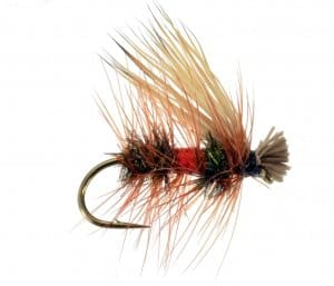 elk hair caddis royal coachman