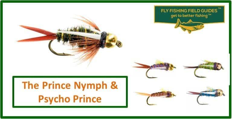Prince Nymph