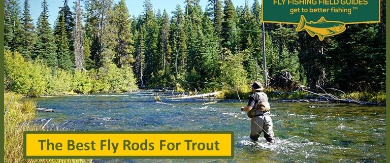 Best Trout Fly Rods